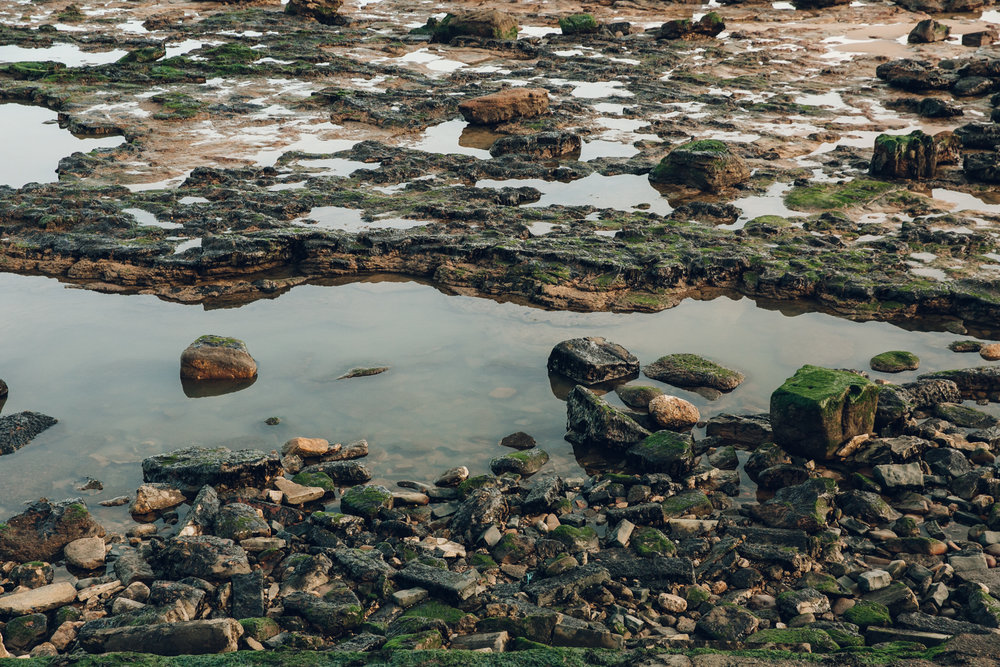 Rock pools on the Tynemouth coastline.