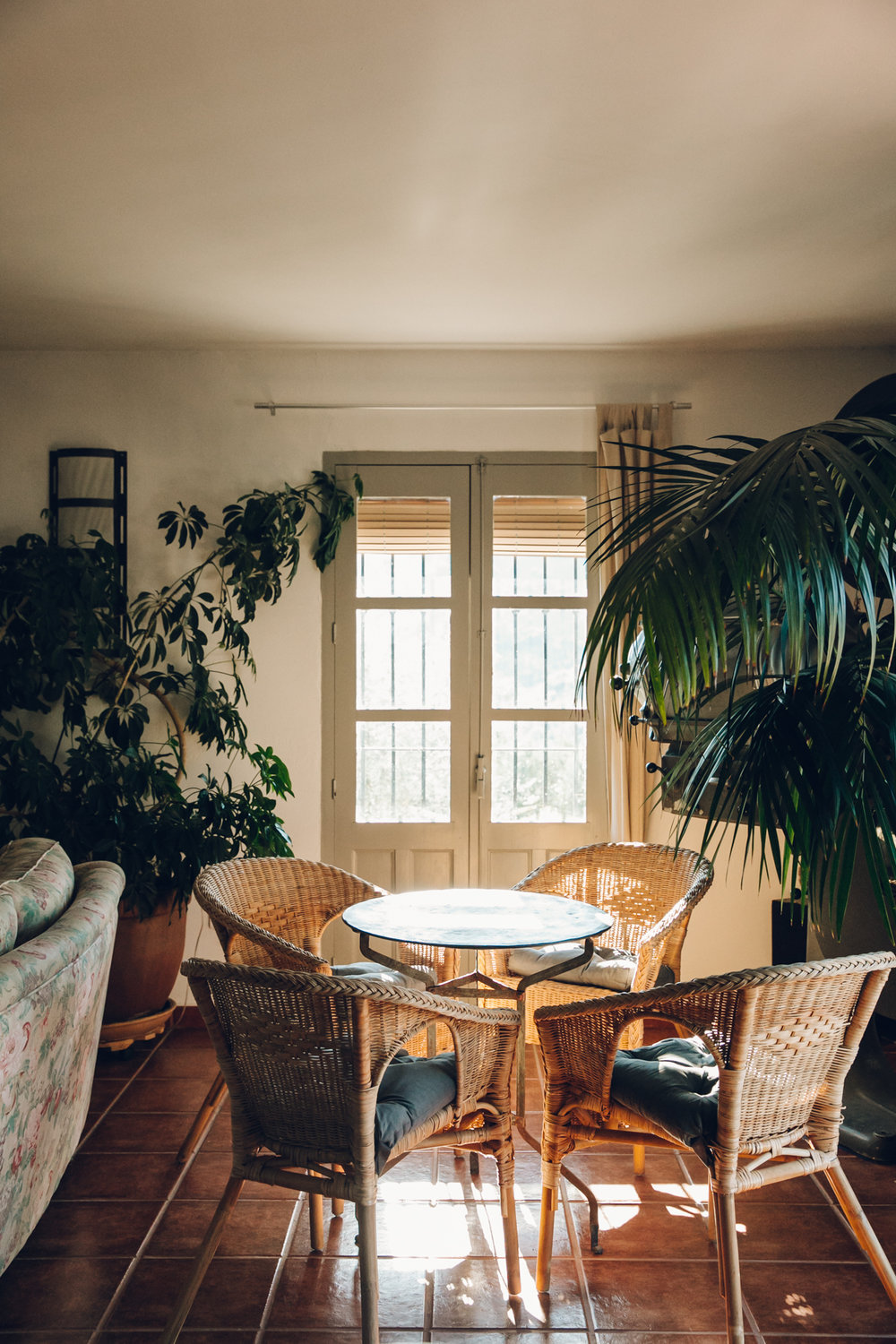 Spanish interior details - with houseplants.