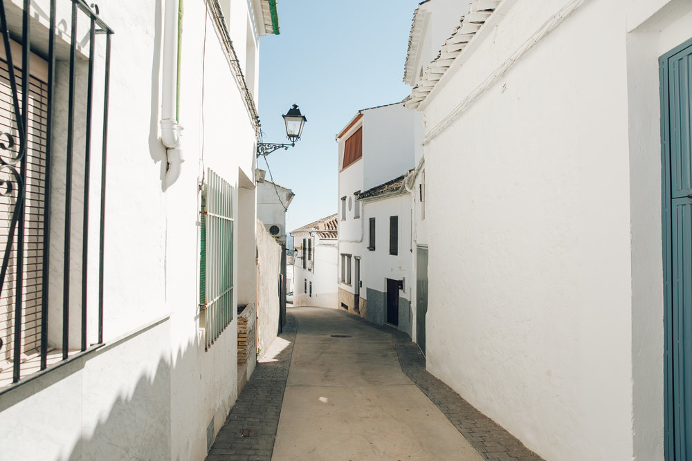 The white-washed houses in Iznajar, Andalusia.