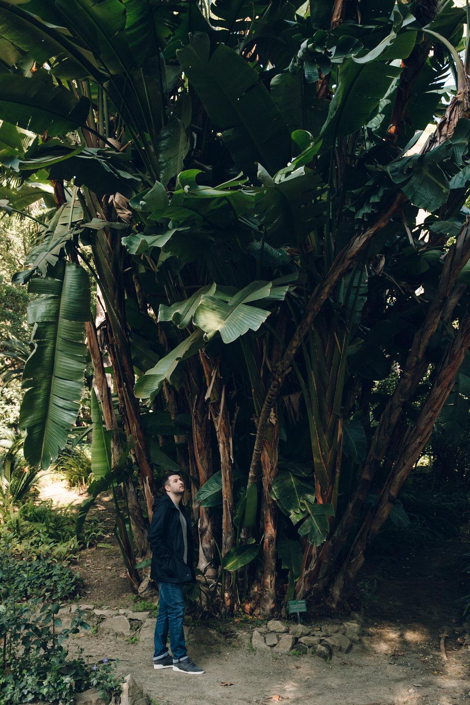 Malaga Botanical Garden Spain