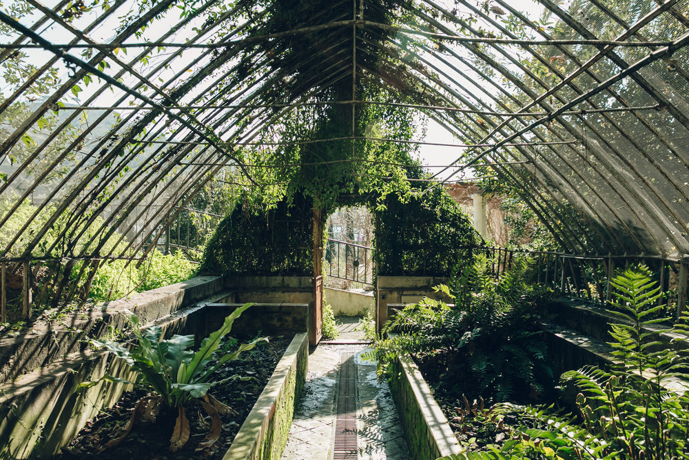 Old glasshouses in Malaga Botanical Gardens, Spain.