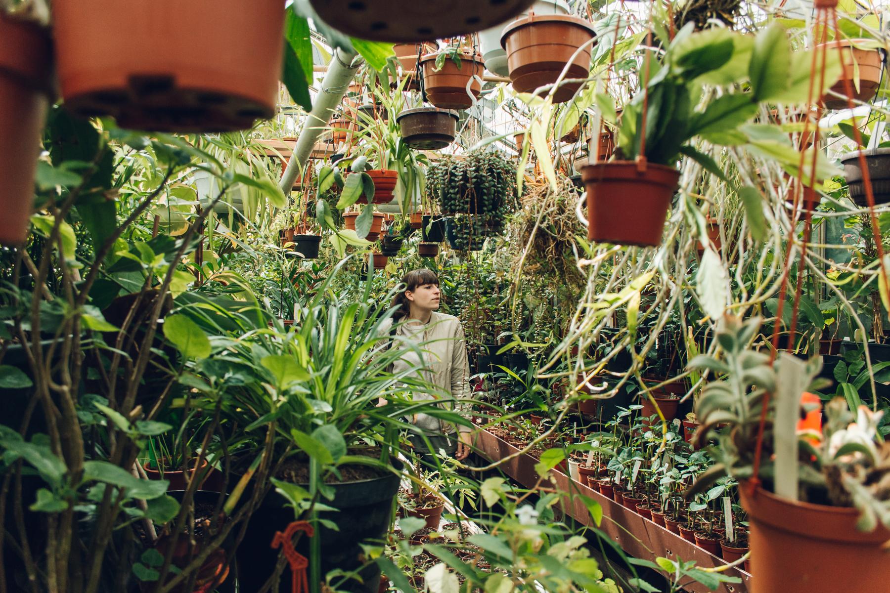 Botanische Tuin Amsterdam : Botanische tuin zuidas u amsterdam u haarkon adventures and studio