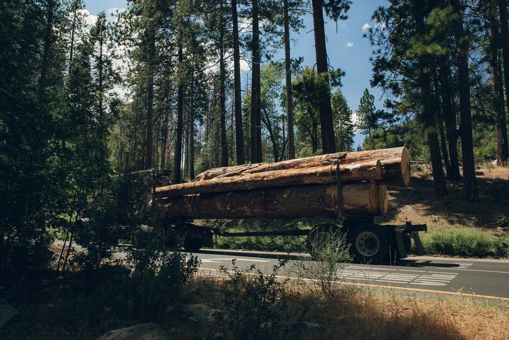 Yosemite National Park California Truck