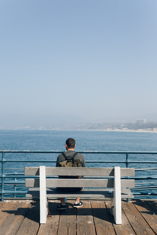 Santa Monica LA California Magnus Pier