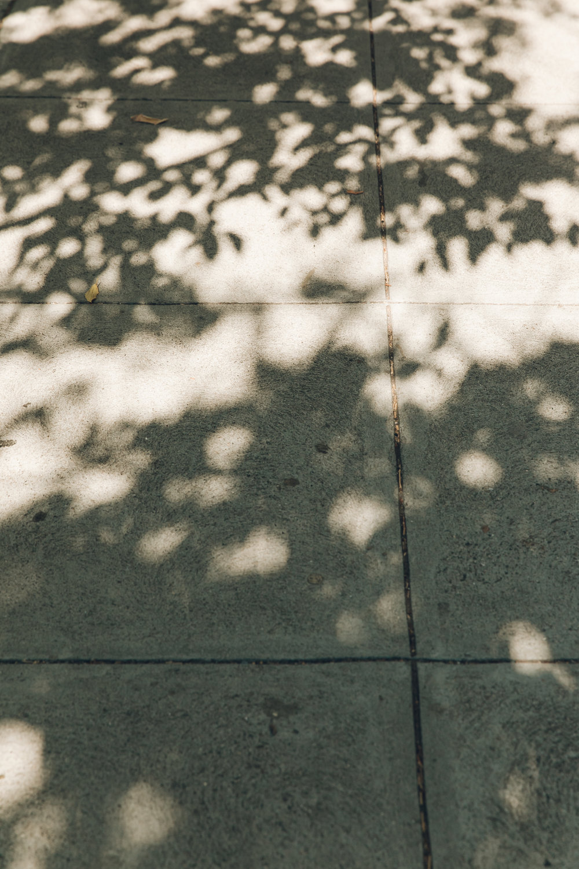 San Francisco Shadow