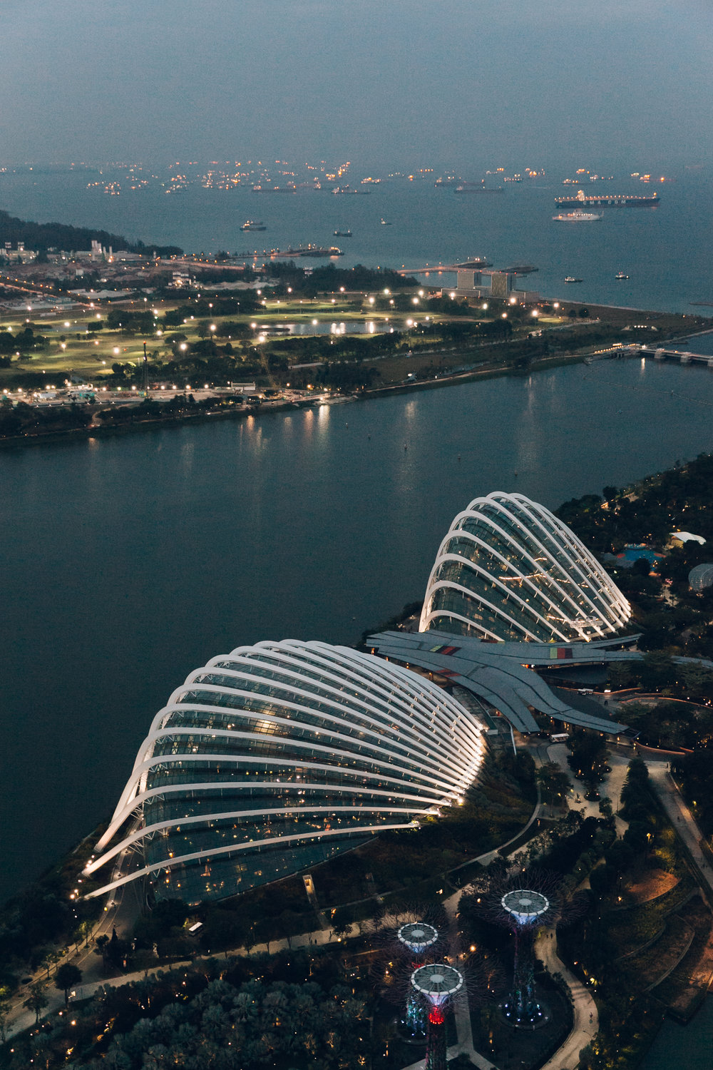 Marina Bay Sands Singapore Gardens by the Bay