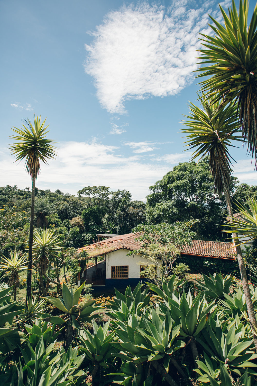Else Kientzler Botanical Gardens