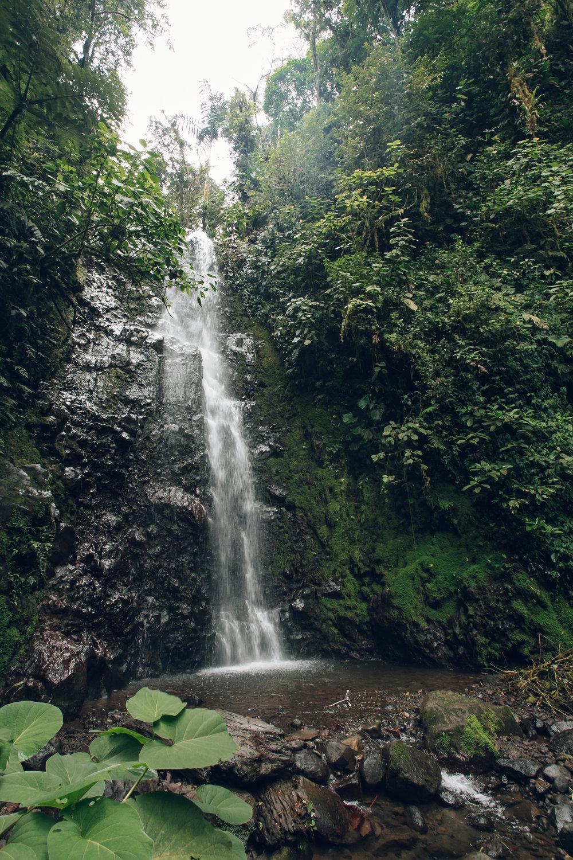 Sky Walk with Sky Adventures in Costa Rica.