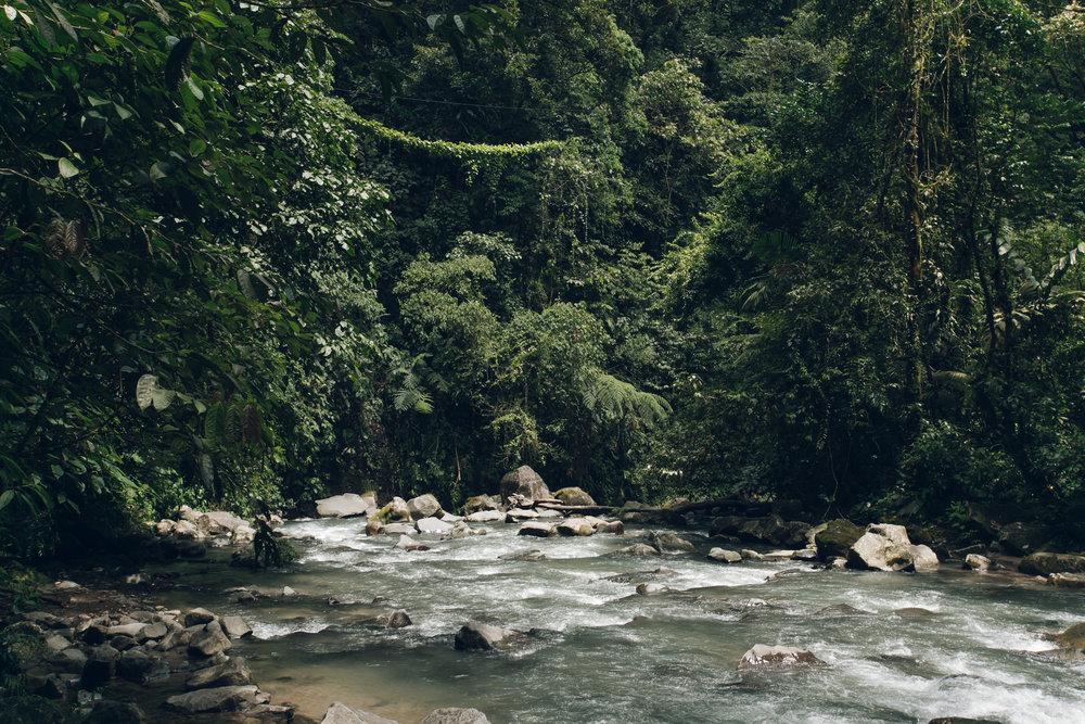 La Fortuna waterfall in Costa Rica.