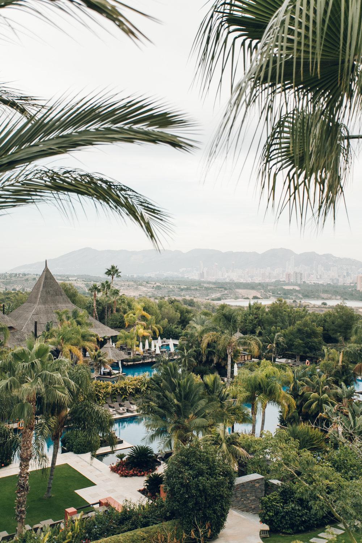 Asia Gardens Hotel Sea View