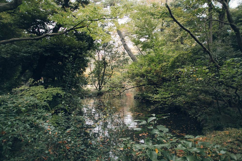 Nezu Museum Garden in Tokyo - Haarkon in Japan