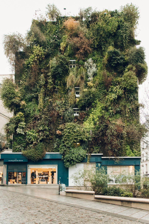 Paris in the Winter by Haarkon. Vertical garden by Patrick Blanc.
