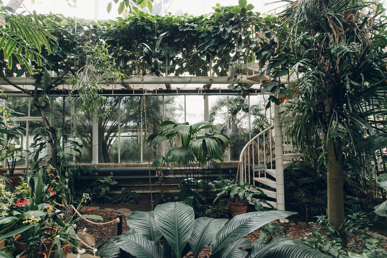 University of Cambridge Botanic Garden, photographed by Haarkon