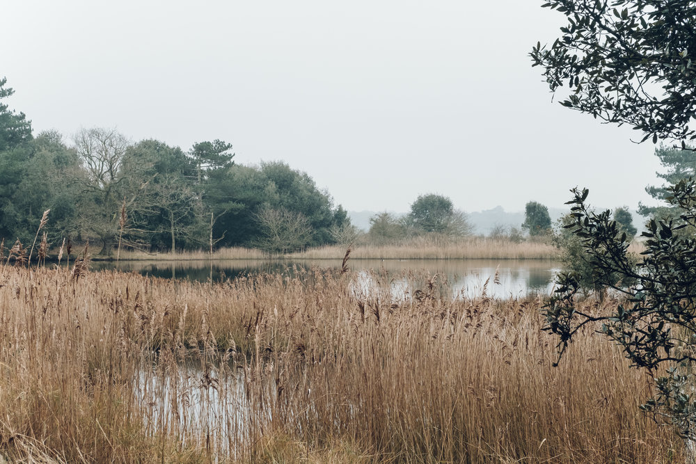 A weekend in Norfolk by Haarkon
