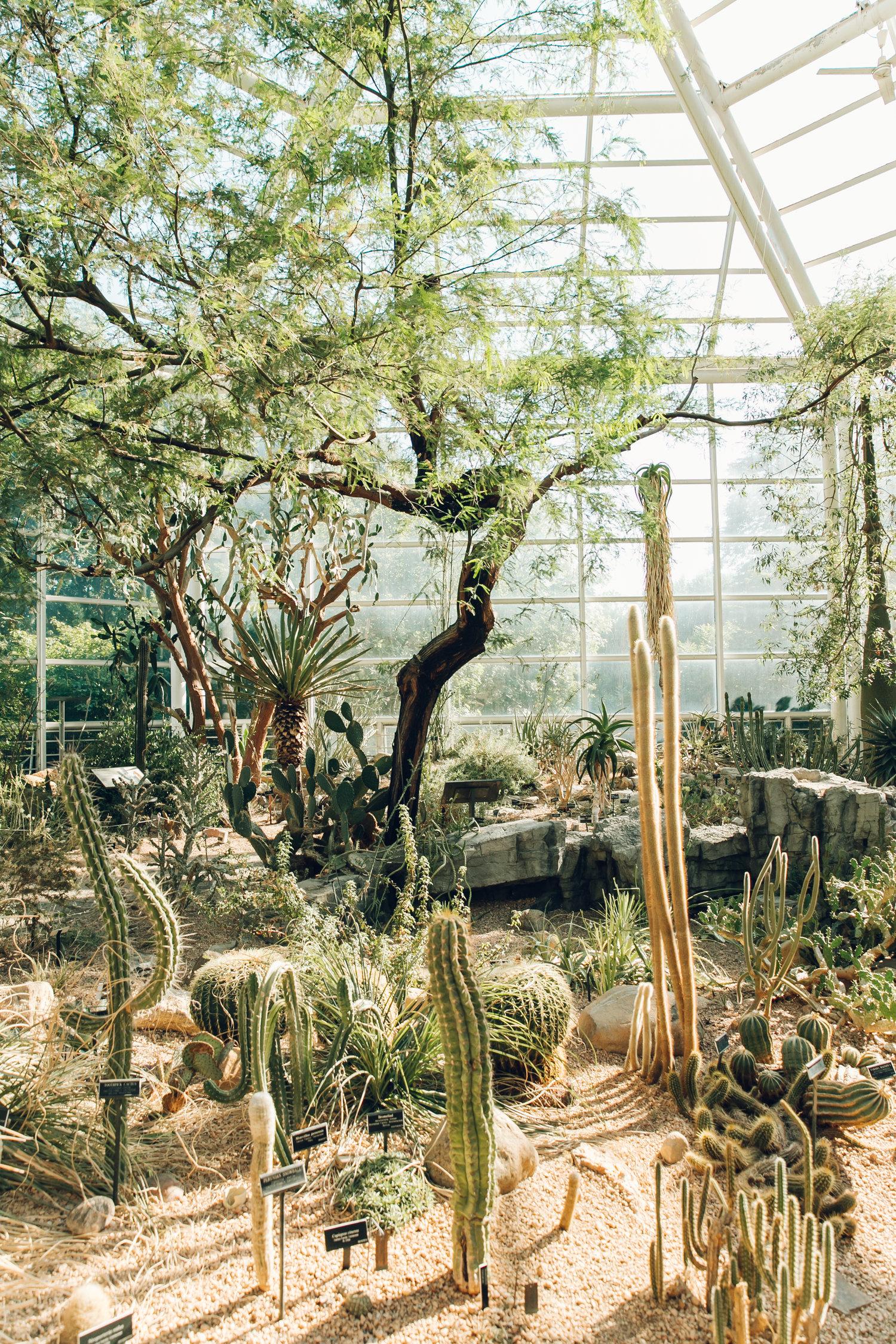 The Steinhardt Conservatory Brooklyn Botanic Garden Usa