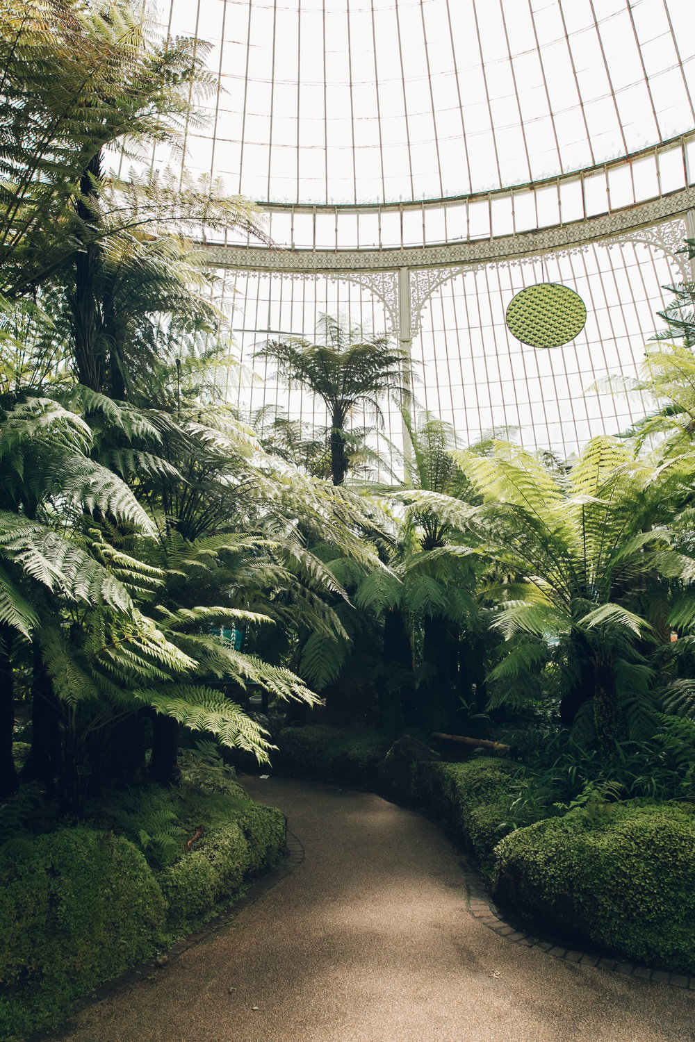 The Kibble Palace of Glasgow Botanic Gardens.
