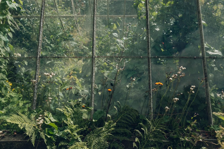 Meersbrook walled garden Sheffield by Haarkon.