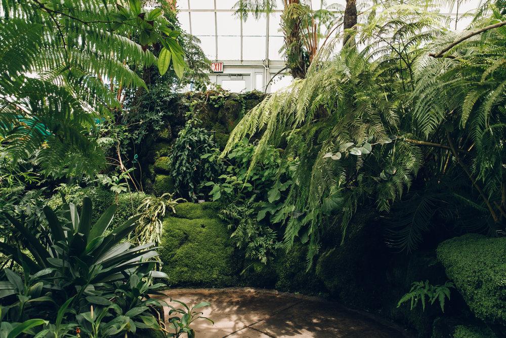 New York Botanic Garden by Haarkon.