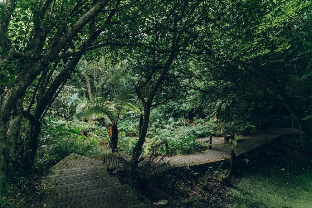 Tremenheere Sculpture Gardens in Cornwall by Haarkon.