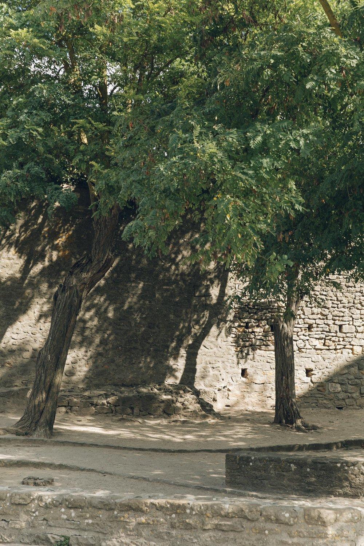 Millau & Carcassonne LR-181.jpg