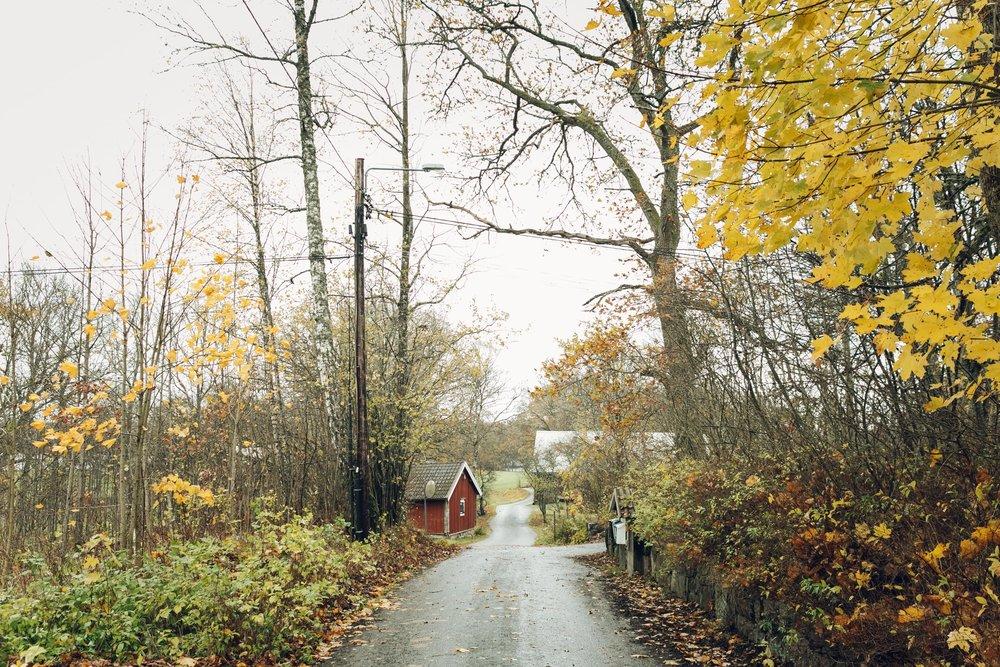 Swedish garden in Smaland, Sweden by Haarkon
