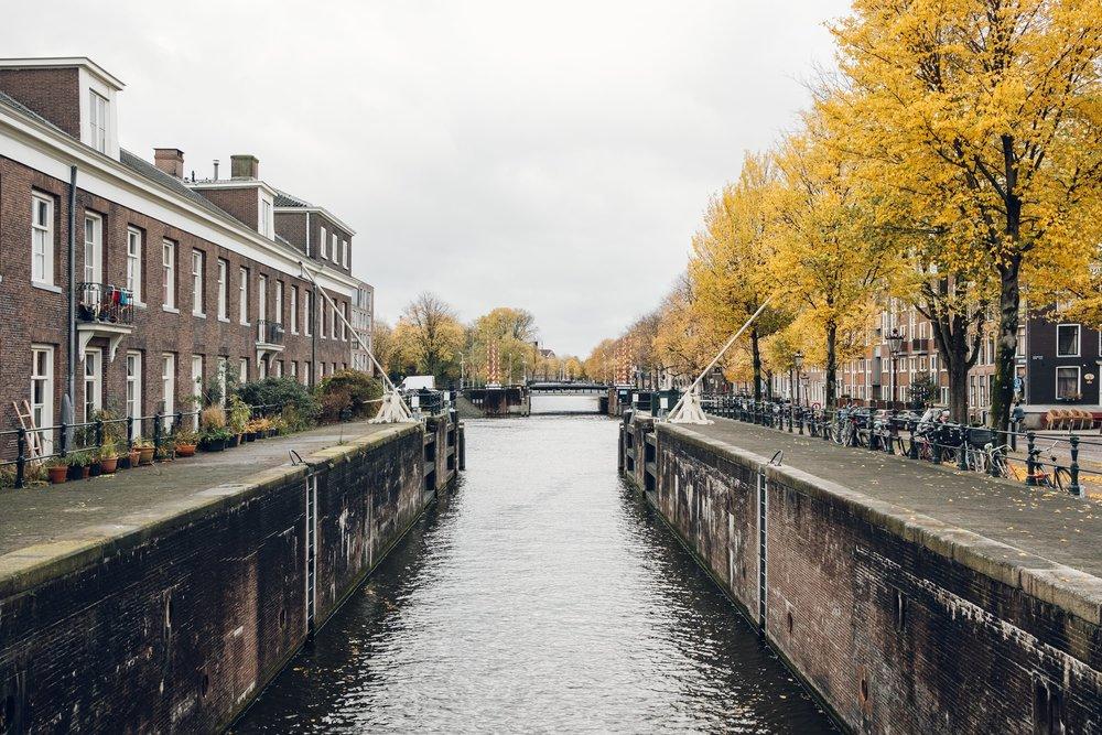 Amsterdam November 2018-17.jpg
