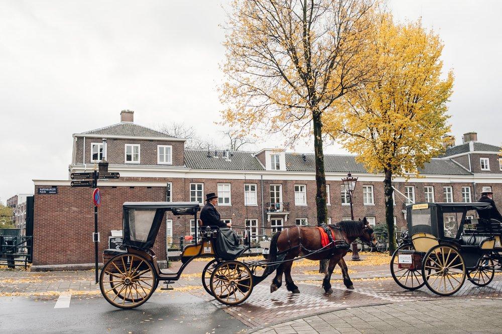 Amsterdam November 2018-21.jpg