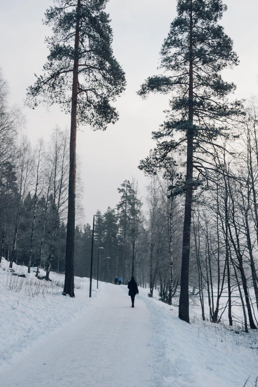 Sognsvann Lake - finding nature in Oslo, Norway by Haarkon