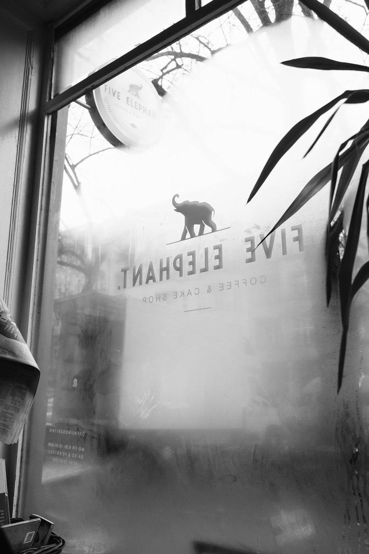 Haarkon in Berlin —a city guide. Five Elephant