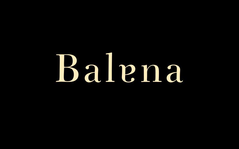 0-005_balena-neg.png