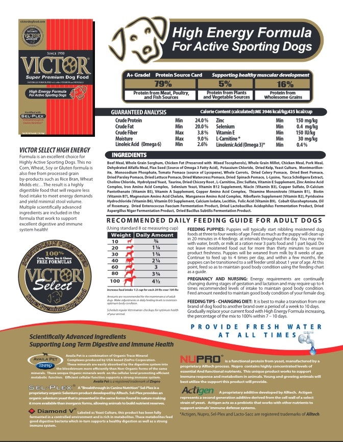 Victor Performance Dog Food In Good Hands