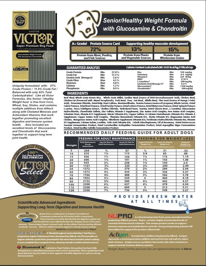 Victor Senior Image.jpg