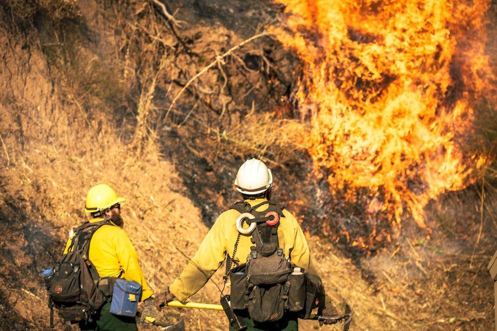 KimCarroll.com - California Wildfires-127-min.jpg