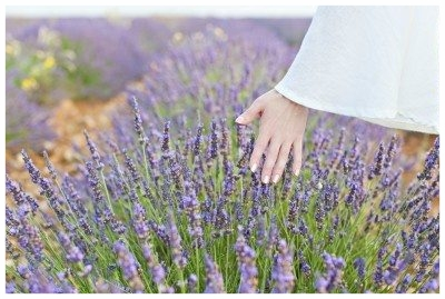 sensory-garden1-400x269.jpg
