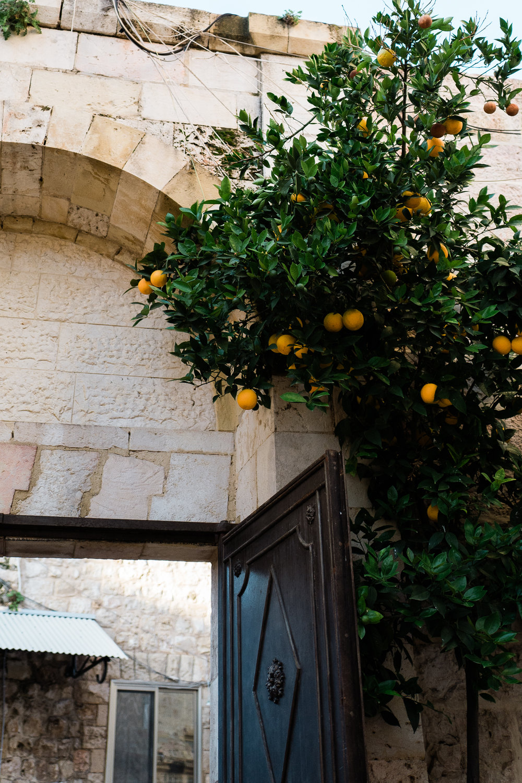 old city jerusalem middle east female documentary lifestyle photographers leica ©2019abigailbobophotography-7.jpg