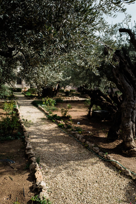 old city jerusalem middle east female documentary lifestyle photographers leica ©2019abigailbobophotography-15.jpg