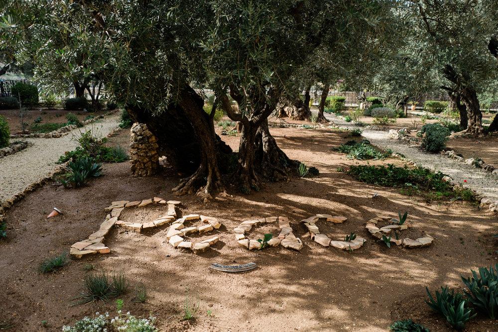 old city jerusalem middle east female documentary lifestyle photographers leica ©2019abigailbobophotography-16.jpg