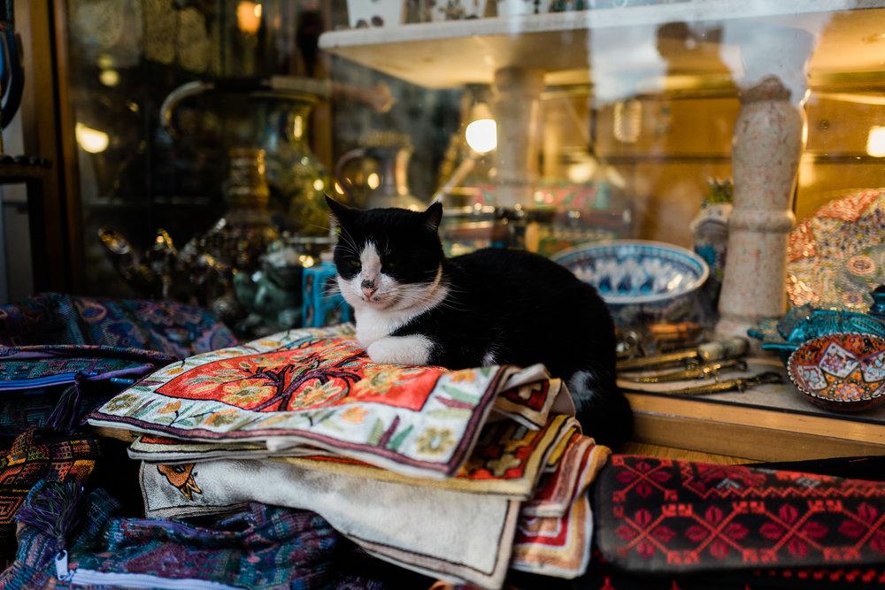 old city jerusalem middle east female documentary lifestyle photographers leica ©2019abigailbobophotography-18.jpg