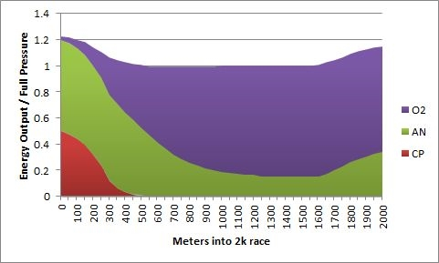 Contribution from energy systems during a 2k race