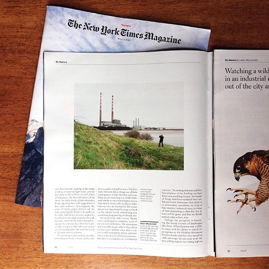 NYT++(2).jpg