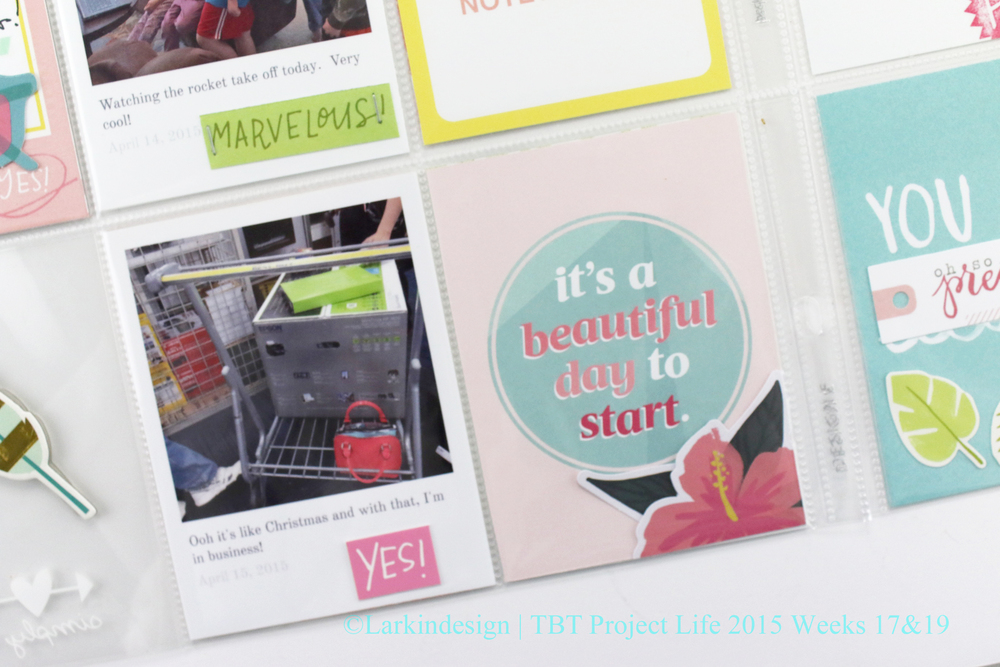 TBT Project Life 2015 Weeks 17 %26 19