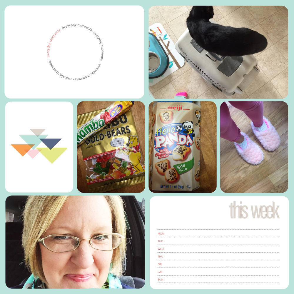 Project Life 2016 Week 10