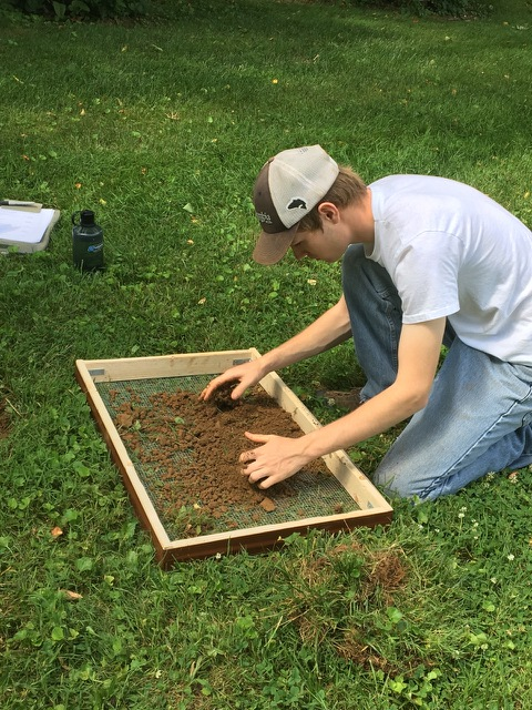 Intern Brant hard at work screening some soil.