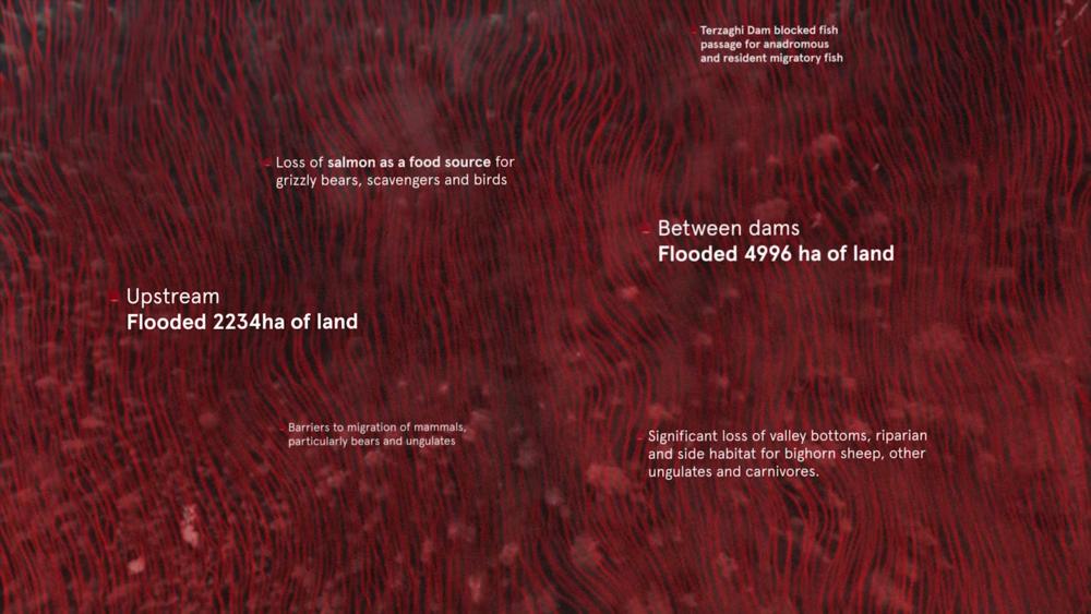 InfographicsScreenshots (00421).png