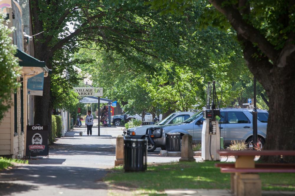 Macca_Tasmania_9571.jpg