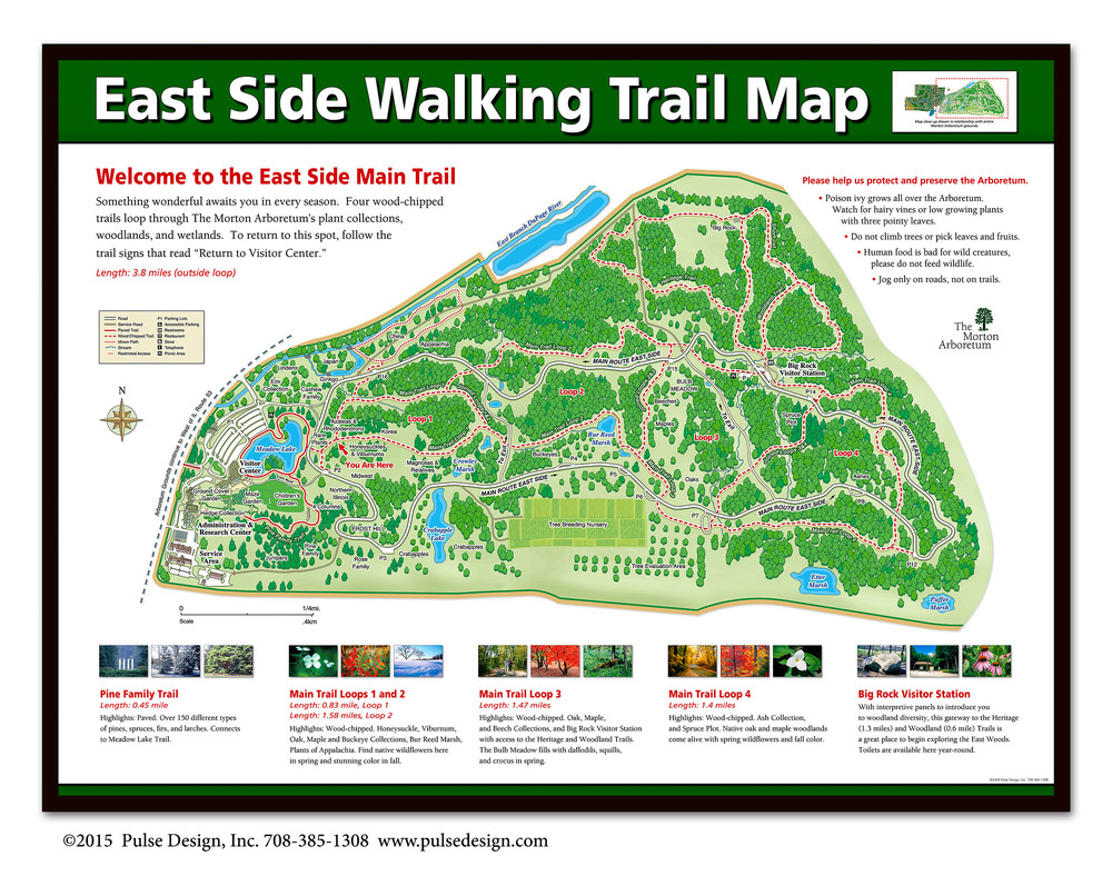 map-morton-arboretum-trailhead-east-pulse-design-inc.jpg