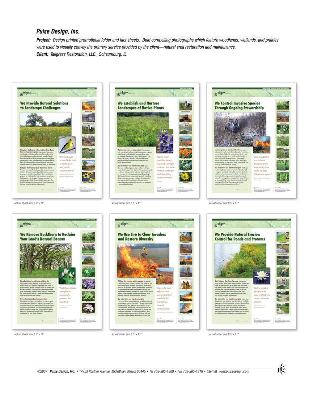 Tallgrass-Fact-Sheets-Pulse-Design-Inc.jpg