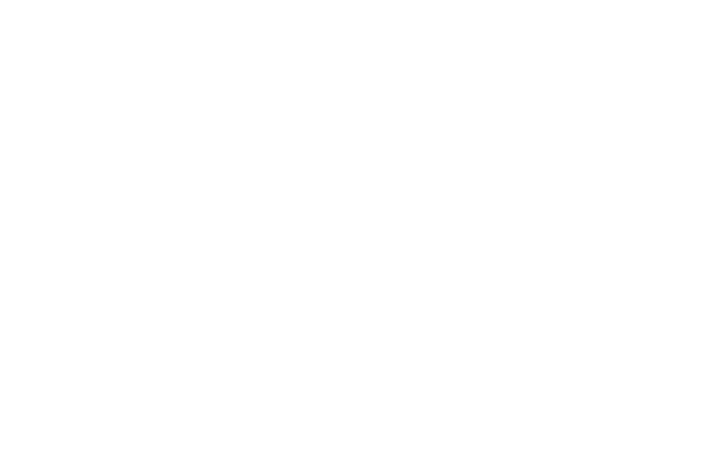 OFFICIAL SELECTION - MONTREAL INTERNATIONAL BLACK FILM FESTIVAL - 2018-2 2.png