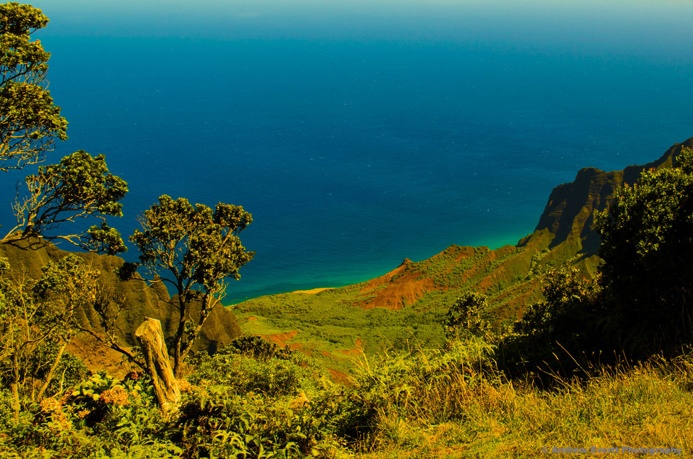 Na Pali Coast from the top of Waimea Canyon