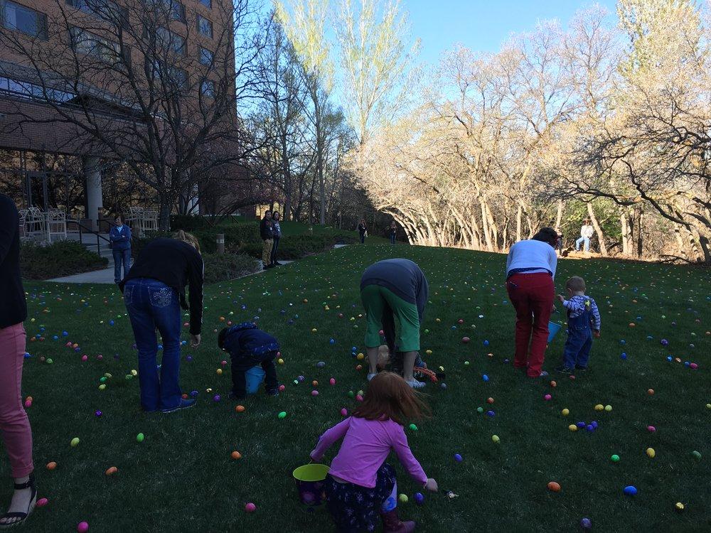 Down syndrome easter egg hunt.